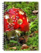 Amanita Muscaria Spiral Notebook