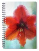 Amaryllis Window Spiral Notebook