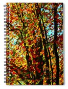 Amazing Fall Foliage Spiral Notebook