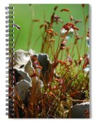 Amazing Jungle Of The Microcosm Spiral Notebook