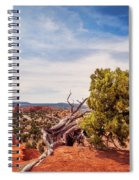 Amazing Juniper Tree At Kodachrome Basin State Park Spiral Notebook
