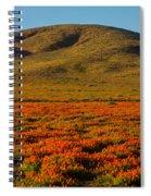 Amazing Poppy Fields Spiral Notebook