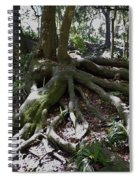 Amazing Roots Spiral Notebook
