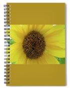 Unique Sunflower Spiral Notebook