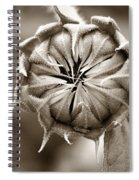 Amazing Sunflower Bud Spiral Notebook