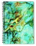 Amazon Spiral Notebook