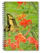 Amazonia Butterfly Spiral Notebook