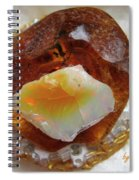 Amber And Ethiopian Opal Spiral Notebook