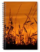 Amber Sundown Meadow Grass Silhouette  Spiral Notebook