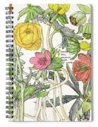 Ambrosia Vi Spiral Notebook