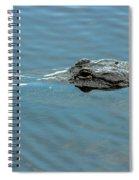 American Alligator Profile Spiral Notebook