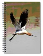 American Avocet Flying Spiral Notebook