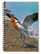 American Avocet Spiral Notebook
