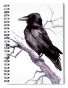 American Crow Spiral Notebook