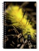 American Dagger Moth Caterpillar Spiral Notebook
