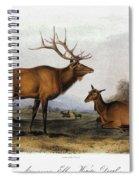 American Elk, 1846 Spiral Notebook