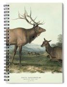American Elk Spiral Notebook