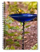 American Goldfinch At Water Bowl Spiral Notebook