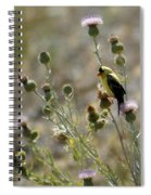 American Goldfinch Having Lunch On Bakery Hill 2 Spiral Notebook