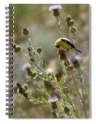 American Goldfinch Having Lunch On Bakery Hill Spiral Notebook