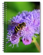 American Hoverfly Spiral Notebook