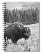 American Icon Spiral Notebook