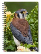 American Kestrel Spiral Notebook