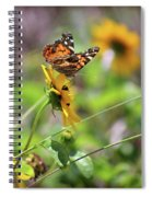 American Lady Butterfly By The Beach Spiral Notebook