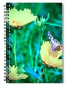 American Lady On Coreopsis Spiral Notebook