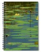 American Lotus Spiral Notebook