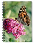 American Painted Lady Spiral Notebook