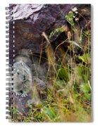American Pika Spiral Notebook