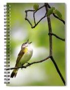 American Redstart Female 2 Spiral Notebook