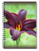 American Revolution With Vignette - Daylily Spiral Notebook