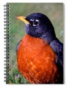American Robin Spiral Notebook