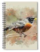 American Robin - Watercolor Art Spiral Notebook