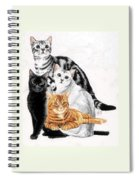 American Shorthair Spiral Notebook