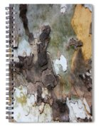 American Sycamore Bark Spiral Notebook