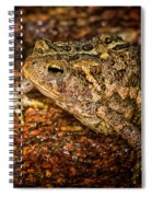 American Toad Spiral Notebook