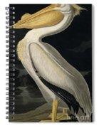 American White Pelican Spiral Notebook