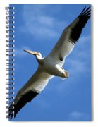 American White Pelican Wings Spiral Notebook