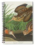 American Woodcock Spiral Notebook