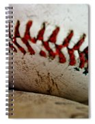 America's Pastime Series II Spiral Notebook