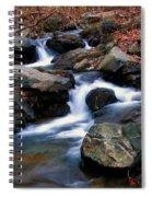 Amicalola Stream Spiral Notebook