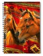 Amigos 2015 Spiral Notebook