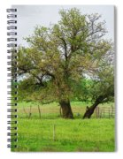 Amish Man And Tree Spiral Notebook