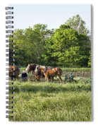 Amish Man Plowing Spiral Notebook