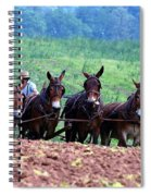 Amish Plowing The Fields With Mules Spiral Notebook