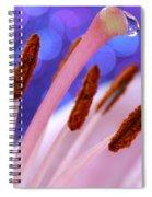 Among Friends Spiral Notebook