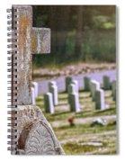 Among Many Spiral Notebook